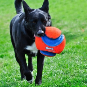 KICK FETCH 15cm
